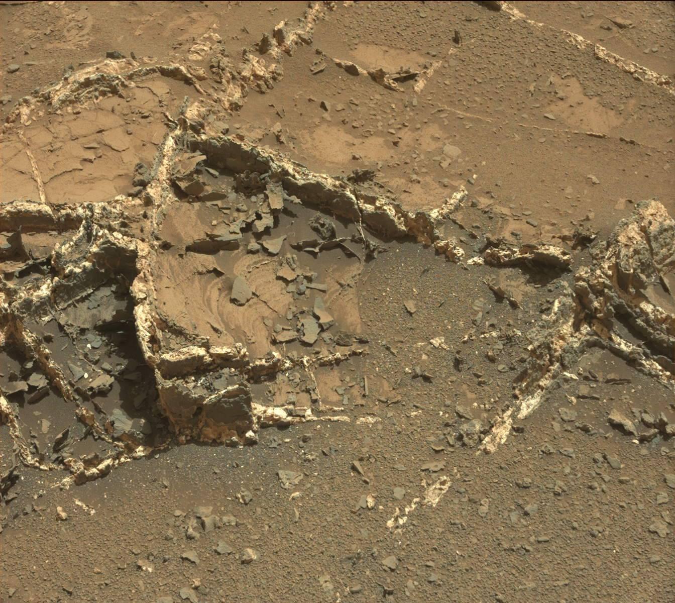 Curiosity Mars Rover: You're So Vein
