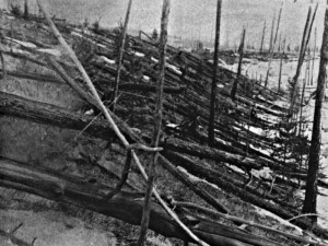 Tunguska: The largest recent impact event.  Credit: Leonid Kulik Expedition