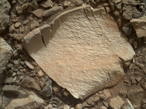 "A rock fragment dubbed ""Lamoose"" is shown in this picture taken by the Mars Hand Lens Imager (MAHLI) on NASA's Curiosity rover.  Credit: NASA/JPL-Caltech/MSSS"