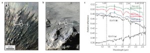 RSL activity in the central peaks of Horowitz crater and associated CRISM spectra. Credit: Lujendra Ojha, et al./Nature Geoscience