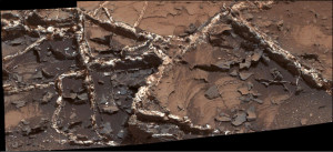 Researchers used the Mastcam and other instruments on Curiosity to study the structure and composition of mineral veins at Garden City, for information about fluids that deposited minerals in fractured rock there.   Credit: NASA/JPL-Caltech/MSSS