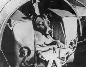 Soviet Union's Sputnik 2 carried the dog, Laika, into Earth orbit in 1957. Courtesy: NASA