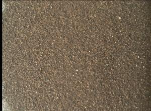 Mars Hand Lens Imager (MAHLI) photo taken on January 14, 2016, Sol 1223. Credit: NASA/JPL-Caltech/MSSS