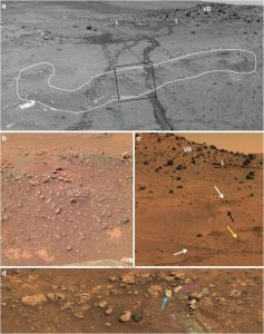 Spirit imagery shows opaline silica nodular outcrops adjacent to Home Plate showing typical stratiform expression.White outline highlights nodular silica outcrop. Rover wheel tracks are roughly one meter apart. Rolling wheels did not deform the roughly15centimeter high outcrop (lighter tracks) compared with the inoperative dragging wheel in a later traverse (darker track). Credit: ASU/Ruff & Farmer